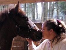 Equine Horse Photography Services Ocala, Florida